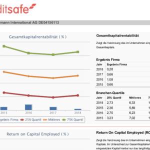 Creditsafe-BerichtGesamtkapitalrentabilität-MM450x300px-300x300.png