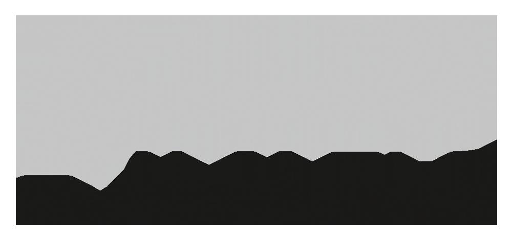 Evalanche Logo Grau
