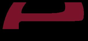 Evalanche Logo Rot