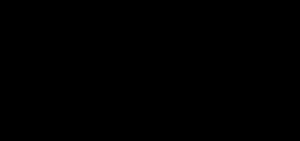 Evalanche Logo in Schwarz